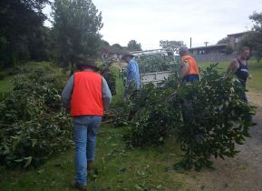 Shows volunteers shifting pittosporum into a truck for green disposal, Edward Hunter Heritage Bush Reserve Weedbuster Day