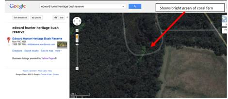 Shows the bright green of the coral fern against the eucalypt cannopy, in the satellite view from Google maps, Edward Hunter Heritage Bush Reserve