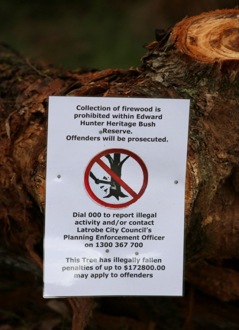 Shows sign placed on illegally felled eucalypt in Reserve, Edward Hunter Heritage Bush Reserve