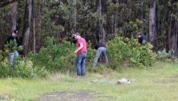 Shows volunteers removing broom, Edward Hunter Heritage Bush Reserve